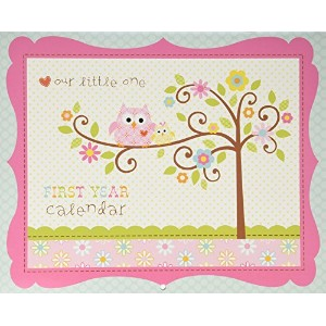 C.R. Gibson First Year Calendar, Happi Baby Girl , New by C.R. Gibson