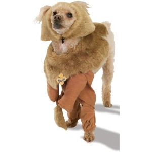 Rubies Costume Wizard of Oz Cowardly Lion Pet Costume, Medium by Rubie's