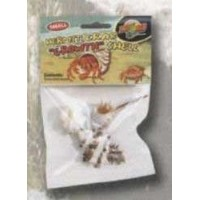 Zoo Med Hermit Crab Growth Shell - Small by Zoo Med