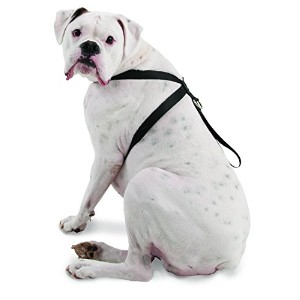 Petmate 11474 Seat Belt Travel Harness for Pets, X-Large, Black by Petmate