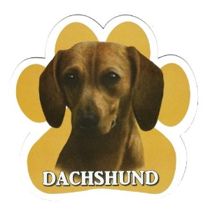 DACHSHUND 足跡マグネットステッカー:ダックスフンド(レッド) 画像イラスト入り 英語犬種名 Designed in the U.S.A [並行輸入品]