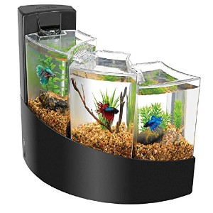 Aqueon Black Betta Falls Aquarium Kit, 2 galllon [並行輸入品]