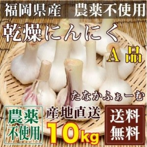 乾燥にんにく(玉) A品サイズ混合 10kg (福岡県 たなかふぁーむ)無農薬野菜