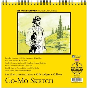 Bee Paper Co-Mo Sketch Pad, 9-Inch by 9-Inch by Bee Paper Company