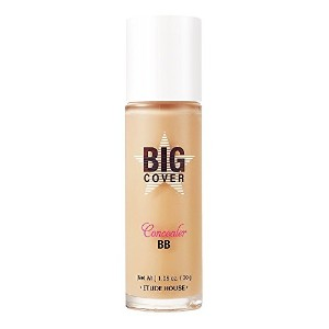 Etude House Big Cover Concealer BB 30g (SPF 50+ / PA+++) - Sand [並行輸入品]