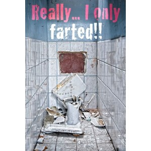Toilet - Only Farted Poster - 91.5x61cm