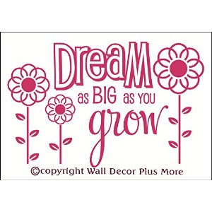 Wall Decor Plus More WDPM2658 Dream As Big As You Grow Wall Sticker, 23-Inch x 15-Inch, Hot Pink ...