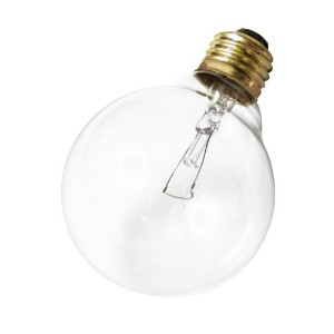 Satco Products S3447 120V 25G25 Medium Base Clear Light Bulb by Satco
