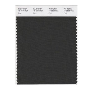 PANTONE SMART 19-0508X Color Swatch Card, Peat [並行輸入品]