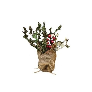 CWI Gifts Potted Country Eucalyptus Plant, 10-Inch by CWI Gifts [並行輸入品]