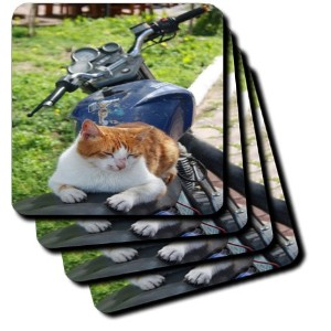 Taiche – Photography – 猫 – Ginger And White Tabby Cat Sunbathing On A Motorcycle – コースター set-of-8...