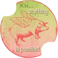 Thirstystone Anything is Possible Car Cup Holder Coaster, by Thirstystone