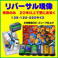 【返送料無料】 リバーサル現像 FUJI FUJICHROME PROVIA Velvia Kodak EKTACHROME ELITECHROME 135 120 220 スリーブ仕上げ...