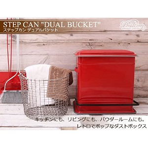 "STEP CAN ""DUAL BUCKET"" DULTON(レッド) ダルトン 分別型ゴミ箱"