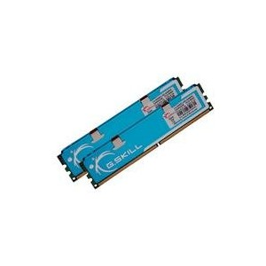 G.Skill Mémoire RAM PC2-6400 4 Go 1066 MHz 240 broches DDR2 (Import Allemagne)