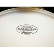 CANOPUS CB14E COATED HEADSmooth White Coted HEAVY 14用カノウプス スネアヘッド