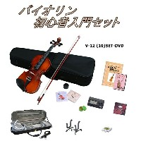 【送料無料】Hallstatt V-12 (10)SET-DVD
