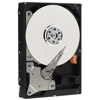 03GPRT DELL 3TB 3.5インチ/SATA/7200rpm Seagate Barracuda ST3000DM001【中古】【全品送料無料セール中!】
