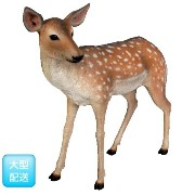 FRP 小鹿 / Fallow Deer - Fawn (Not in Benelux) 【動物園オブジェ アニマルオブジェ 店舗・イベント向け】