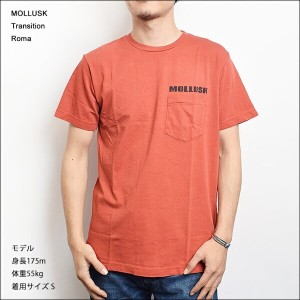 【メール便】MOLLUSK(モラスク)【MF14005】TRANSITIONTee ShirtsRomaTシャツ