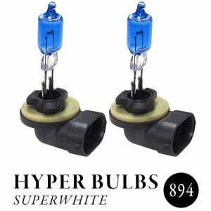 CC BULBS 【894】 SUPERWHITE