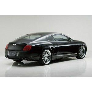 BENTLEY CONTINENTAL GT M/C before Executive Line 〜07y D.T.M SPORTS MUFFLER (OVAL120W×2)