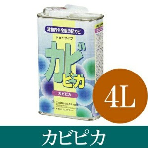 [R] 【送料無料】 カビピカ [4L] [SS]
