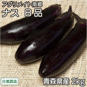 ナス B品2kg(青森県 アグリメイト南郷)自然農法無農薬野菜・送料無料・産地直送 P20Aug16