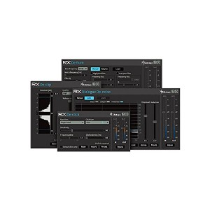 iZotope ( アイゾトープ ) / RX Plugin Pack