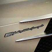 Detailpart 車 完全な名前エンブレム Car Full Name Emblem(for Mercedes-Benz AMG 用)海外直送品