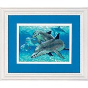 DIM クロスステッチキット Deep Sea Dolphins 【並行輸入品】 Dimensions Gallery No Count Cross Stitch, Deep Sea...