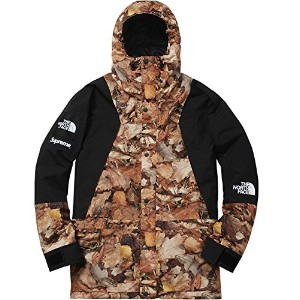 Supreme The North Face/Mountain Light Jacket[Leaves]16 aw メンズ マウンテンパーカー ジャケット (S)