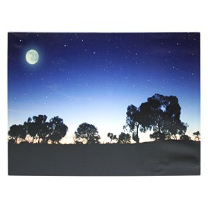 "Melrose 549391 - 27.5"" x 20"" x 3/4"" - ""Tree / ナイト Sky"" バッテリー Operated LED Lighted キャンバス (Batteries..."