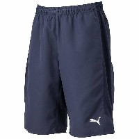 ○17SS PUMA(プーマ) Ascension Woven Training Shorts JP 655269-02 メンズ