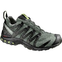 サロモン Salomon メンズ ランニング シューズ・靴【XA Pro 3D CS WP Trail Running Shoe】Castor Gray/Black/Fern