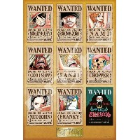 【1000P】【ワンピース】NEW WANTED POSTERS