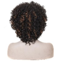 Zhhlinyuan 良質 Womens Heat Resistant Fiber Wig Hair Pretty Short Small Curly Hair WS500