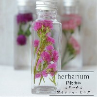【herbarium Bottle】ハーバリウム角ミニボトル スターチス<フィッシャーピンク>−植物標本−母の日ギフト