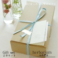 【herbarium Bottle】ハーバリウムボトルギフト2本セット −植物標本−ギフト