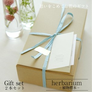 【herbarium Bottle】ハーバリウムボトルギフト2本セット -植物標本-ギフト
