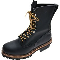 REDWING (レッドウイング) Heritage Work / 9 LOGGER BOOTS Style No.8210 (29cm/11us/D)