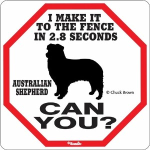 I MAKE IT TO THE FENCE IN 2.8 SECONDS AUSTRALIAN SHEPHERD CAN YOU?サインボード:オーストラリアンシェパード 警戒中 フェンスまで2....