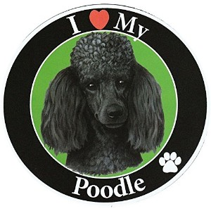 Poodle サークルマグネットステッカー:プードル(ブラック) 画像イラスト入り 英語犬種名 Designed in the U.S.A [並行輸入品]