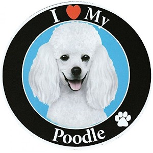 Poodle サークルマグネットステッカー:プードル(ホワイト) 画像イラスト入り 英語犬種名 Designed in the U.S.A [並行輸入品]