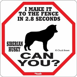 I MAKE IT TO THE FENCE IN 2.8 SECONDS SIBERIAN HUSKY CAN YOU?サインボード:シベリアンハスキー [並行輸入品]