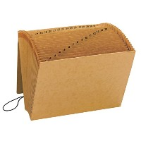 1-31 Indexed Expanding Files, 31 Pockets, Kraft, Letter, Brown (並行輸入品)