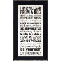 Artistic反射ar609Things We Learn from a犬