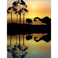 JP London PMUR0009 Peel and Stick Removable Wall Decal Sticker Mural, African Animal Safari Stream,...