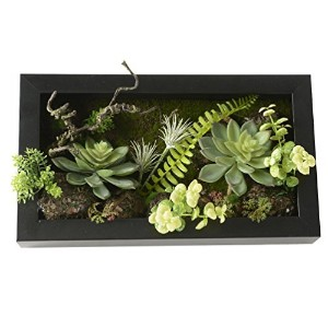 7.87in * 13.78in 3d、人工花壁ハンガーボールCactus Moss on the Stone Green Leaves Grass Ferns withフレーム形状花瓶ホーム装飾...