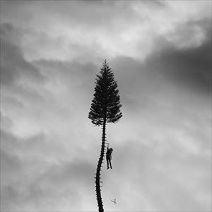 [CD]MANCHESTER ORCHESTRA マンチェスター・オーケストラ/BLACK MILE TO THE SURFACE【輸入盤】